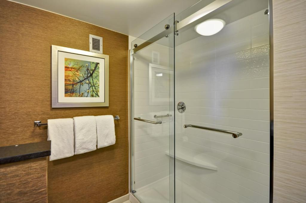 Frameless Sliding Glass Shower Door Design ES250